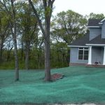 Hydroseed Green Colorant